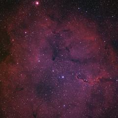 The Elephant Trunk Nebula (Ha-RGB-OIII) (Alessio Beltrame) Tags: astroimaging astronomy astrophotography cepheus cosmos deepsky elephant elephanttrunk fsq85edx garnet garnetstar halpha narrowband nebula oiii photoshop pixinsight qhy163m qhyccd sky space star stars takahashi trunk astrometrydotnet:id=nova2384085 astrometrydotnet:status=solved