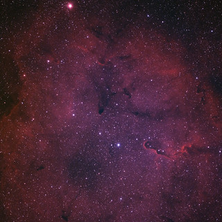 The Elephant Trunk Nebula (Ha-RGB-OIII)