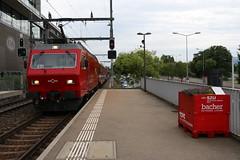 2017-09-04, SZU, Zürich Saalsporthalle (Fototak) Tags: train eisenbahn treno railway zürich switzerland sbahn commutertrain s4 szu re456 544 456544 456105