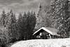 Snowy Cabin (G. Lang) Tags: cabin bäume blackforest winter landschaft hiver winterlandschaft allemagne arbres schwarzwald sonyalpha7ii deutschland paysage landscape forêtnoire paysagedhiver neuenweg sonyilce7m2 import29122017 lodge trees hütte cabane germany winterlandscape