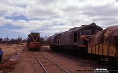 J348 A1509 crossing XA and XA1405 (RailWA) Tags: railwa philmelling joemoir westrail a1509 crossing xa xa1405