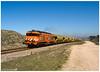 São Martinho do Porto 08-03-15 (P.Soares) Tags: 1900 1905 comboio cp comboios cpcarga carga caminhodeferro linha locomotiva locomotivas linhas laranja trains tren train