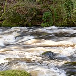 East Dart river after heavy rain thumbnail