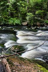 IMG_7203-1 (Andre56154) Tags: schweden sweden sverige wasser water fluss river ufer cataract stromschnelle forest