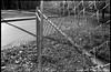 metal fence, sunlit, corner lot, Druid Avenue, West Asheville, North Carolina, FED 4, Arista.Edu 200, Moersch Eco Film Developer, mid November 2017 (steve aimone) Tags: fence wire metal posts street neighborhood westasheville northcarolina fed4 industar26 soviet rangefinder 35mm film aristaedu200 moerschecofilmdeveloper blackandwhite monochrome monochromatic