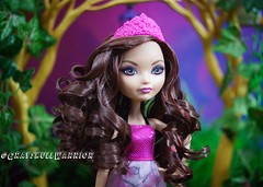#briarbeauty #everafterhigh #thronecoming (GrayskullWarriorToys) Tags: briarbeauty everafterhigh thronecoming