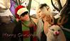 Merry Christmas (Niki Wirefly) Tags: fae fairy fairey faerie male fantasy secondlife lufian wings holidays niki love sl men couple people colour
