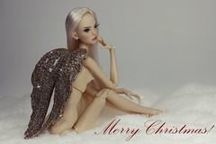 I wish everyone Merry Christmas and Happy New Year !! (meg fashion doll) Tags: i wish everyone merry christmas happy new year