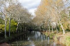 Seuil de Naurouze, Aude (lyli12) Tags: canaldumidi aude automne autumn lauragais paysage landscape languedocroussillon eau nikon reflet france