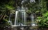 Russell Falls (Bradley Grove) Tags: green nature rocks water cascade fern flow jungle lush rainforest tasmania waterfall
