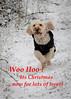 Woo Hoo ! (DP the snapper) Tags: turborunning turbo riflerange christmas2017 snow