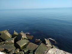 BLACK -SEA .....