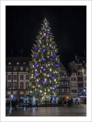 Le grand sapin de Strasbourg (Francis =Photography=) Tags: europa europe france gradest alsace basrhin 67 strasbourg placekléber magasin décorationsdenoël sapin legrandsapindestrasbourg arbre arbredenoël christmastree weihnachtsbaum fir tanne décorations nocturne nuit soir éclairage