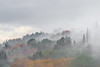 L'hiver dans l'arrière pays (sud de la France) (william 73) Tags: omd em10 mk2 olympus 75mm f18 france alpesmaritimes brume hiver