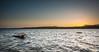 Silver water (Ignacio Ferre) Tags: embalse embalsedevalmayor ríoaulencia reservoir agua water sunset anochecer puestadesol dusk cielo sky paisaje landscape panorama nikon madrid españa spain ngc