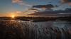 Sunset Westhay Moor (1 of 1) (davebennett65) Tags: sunset sky dusk westhaymoor wildlifetrust somerset lake water wildlife