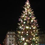 Strasbourg Christmas Tree thumbnail