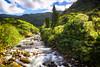 Creek (Cyclase) Tags: river fluss flus water wasser taiwan asia taipei taipeh park landscape landschaft creek bach rocks felsen bulb nature filter nd mountain berg yangminshan nationalpark longexposure