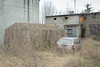 Łódź, 2017.12 (Prassal) Tags: decay car auto wagen samochód passat szklarnia glashaus gewächshaus treibhaus glasshouse greenhouse