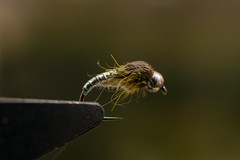 Olive nymph (barnabasturi) Tags: flyfishing fishing fly flytying