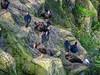 Ugly (tubblesnap) Tags: chester zoo animals fuji xs1 tubblesnap vulture bird waldrapp ibis