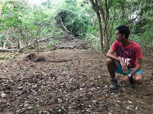 15 Komodo Island (5)
