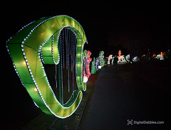 DSC_1476-Edit (DigitalDabbles) Tags: chinese lantern koka booth cary nc festival