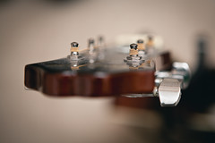 1/365 (phant0mv87) Tags: guitar epiphone canon 5d2 5dmk2 5dmkii 2470 580ex speedlite bokeh