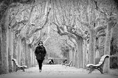 Paseos de invierno (Osruha) Tags: paseo passejades walks invierno hivern winter soledad tranquilidad pensamientos loneliness peace thoughts parque parc park parquegrande parquejoseantoniolabordeta blancoynegro blancinegre blackandwhite bw bn monocromo monocrom monochrome bnw composición composició composition naturaleza nikon nikonistas d750 flickr