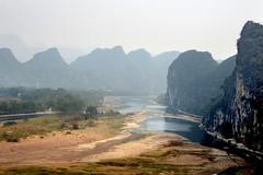 Lijiang river 灕江 (MelindaChan ^..^) Tags: guilin china 桂林 cows life chanmelmel mel melinda melindachan tallowtrees 烏桕灘 烏桕 tree plant beach 灕江 river lijiang