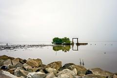 Dreary, muddy Mon Repos morning #1 (*Amanda Richards) Tags: guyana georgetown seawall atlanticcoast atlanticocean rainy mud landscape wideangle