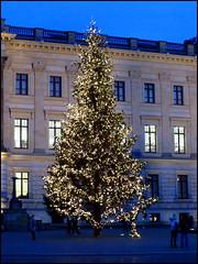 Day 363 (kostolany244) Tags: 3652017 breathe2017 december day363 29122017 kostolany244 canonixus500hs europe germany geo:country=germany breathe christmas tree 365the2017edition