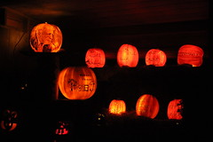 IMG_6572 (comtrag) Tags: jackolanterns rogerwilliamszoo rhodeisland halloween pumpkins pumpkincarving
