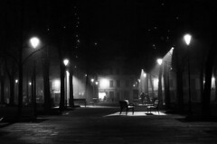 A foggy December night -  Reggio Emilia - January 2010 (cava961) Tags: reggioemilia monochrome monocromo analogue analogico bianconero bw