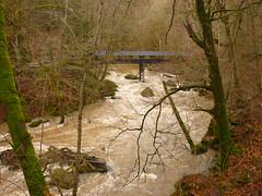 Brücke Irreler Wasserfälle (Jörg Paul Kaspari) Tags: irrel irrelerwasserfälle river wild fluss gewässer prüm naturpark südeifel eifel hochwasser brücke bridge