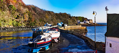 Aberdour 26 Nov 2017 53.jpg (JamesPDeans.co.uk) Tags: view objects lamp aberdour landscape ships yacht gb greatbritain shore transporttransportinfrastructure panorama prints for sale northsea fife sea firthofforth unitedkingdom commerce digital downloads licence scotland britain harbour europe wwwjamespdeanscouk james p deans photography man who has everything metals landscapeforwalls coast uk corrugatediron windvane weathervane