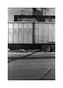(billbostonmass) Tags: adox silvermax 100 129silverman1100min68f film fm2n 40mm ultron epson v800 roxbury massachusetts