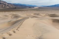 Hiker's Prints (W9JIM) Tags: california unitedstates w9jim sand sanddunes panamintdunes dvnp deathvalley telescopepeak lakehill 7d2 1635l footprints