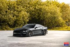 Ford Mustang GT - Vossen x Work - VWS-3 - 1© Vossen Wheels 2017 1002 (VossenWheels) Tags: ford fordaftermarktwheels fordmustang fordmustanggt fordmustanggtaftermarketwheels fordmustanggtwheels fordmustangwheels fordwheels mustang mustangaftermarketwheels mustanggt mustanggtaftermarketwheels mustanggtwheels mustangwheels vws vws3 vossen vossenwheels vossenxwork workwheels fordmustangaftermarketwheels ©vossenwheels2017