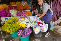 Woman sells flowers (Evgeny Ermakov) Tags: asia asian chiang chiangmai mai southeast southeastasia thai thailand bucket candid colorful cultural culture flower flowers fresh local market marketstall marketplace multicolored multicoloured people red retail rose sale salesman seller selling shop street trade trader tradition typical vendor vibrant white woman work yellow editorialuse