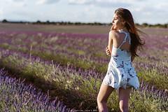 Lucía - 5/5 (Pogdorica) Tags: modelo sesion retrato posado chica campo lavanda brihuega lucia