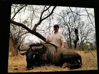 Zimbabwe Cape Buffalo Hunt 13