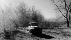 avoiding the holiday rush...(HTT) (BillsExplorations) Tags: abandoned abandonedillinois abandonedtruck fordtruck ford rust old vintage truckthursday truck forgotten discarded decay ruraldecay holiday christmas blackandwhite monochrome field landscape tree
