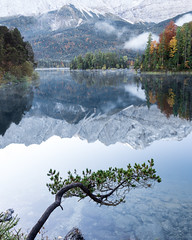 Eibsee Morning (Fabian Fortmann) Tags: zugspitze alps mountain eibsee relfetion reflektion tree fog autumn herbst fall morning morgen see water alpen