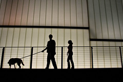 062107-067F (kzzzkc) Tags: nikon d200 usa missouri kansascity people dog nelsonatkins museumofart block building glass silhouette fence nightshot