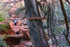 Fay Canyon (Coconino National Forest) Tags: arizona coconinonationalforest faycanyon faycanyontrail faycanyontrail53 faycanyontrailno53 forestservice k20d pentaxk20d redrockrangerdistrict redrocksecretmountainwilderness sedona usfs canyon desert forest hiking outdoors redrockcountry redrocks trail wilderness winter unitedstates