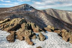 HIGHLAND SNOW (Larry W Brown) Tags: snow winter shenandoahnationalpark virginia hawksbillmountain nakedtopmountain crescentrockcliff blueridgemountains appalachia