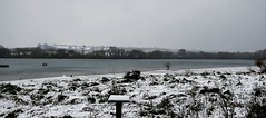 Daventry Country Park (Alex J Donohue) Tags: daventrydistrict winter snow northamptonshire northants east midlands uk daventrycountrypark reservoir