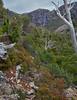 Meander-Falls-Tasmania (ShirleyC059) Tags: meander falls tasmania mountain waterfall australian bushwalking hiking