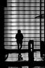 [ Curvilinea - Curvilinear ] DSC_0150.3.jinkoll (jinkoll) Tags: city geometry silhouette bnw blackandwhite bn woman people shadow walk walking step relections lights night nyc newyork manhattan timessquare rain raining